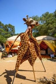 rachelstiltsgiraffe