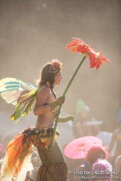 fairystilts