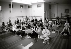 Deep Yoga Ginseng