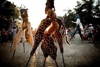 giraffestilts
